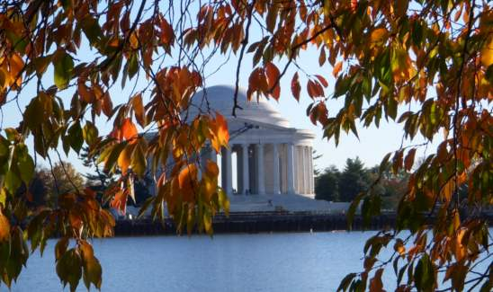 Jefferson Memorial framed by autumn leaves