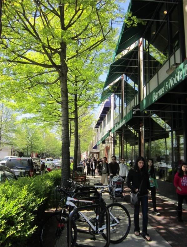 Downtown Bethesda sidewalk